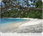 Andaman Exotica