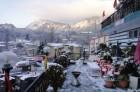 Blooming Honeymoon Tour To Nainital